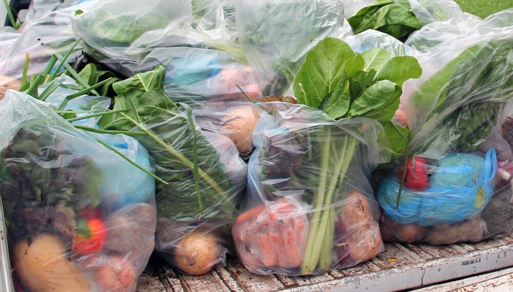bolson verduras agroecologicas