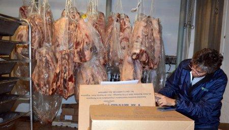 carne vacuna infocampo