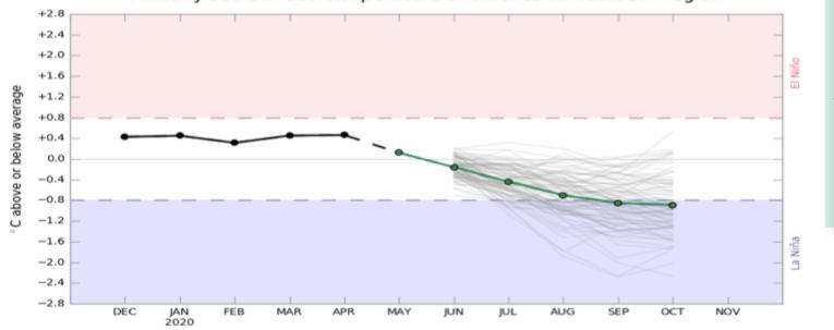 Tendencia climática 2020 - El Niño