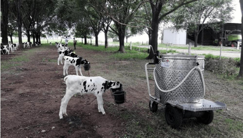 taxi de leche