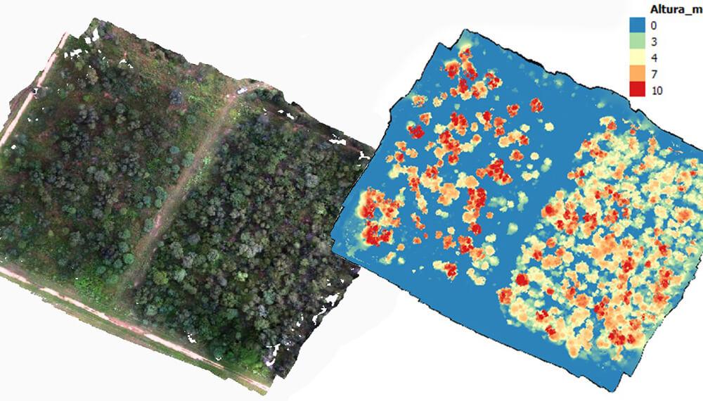 imágenes drones y escaner láser bosques