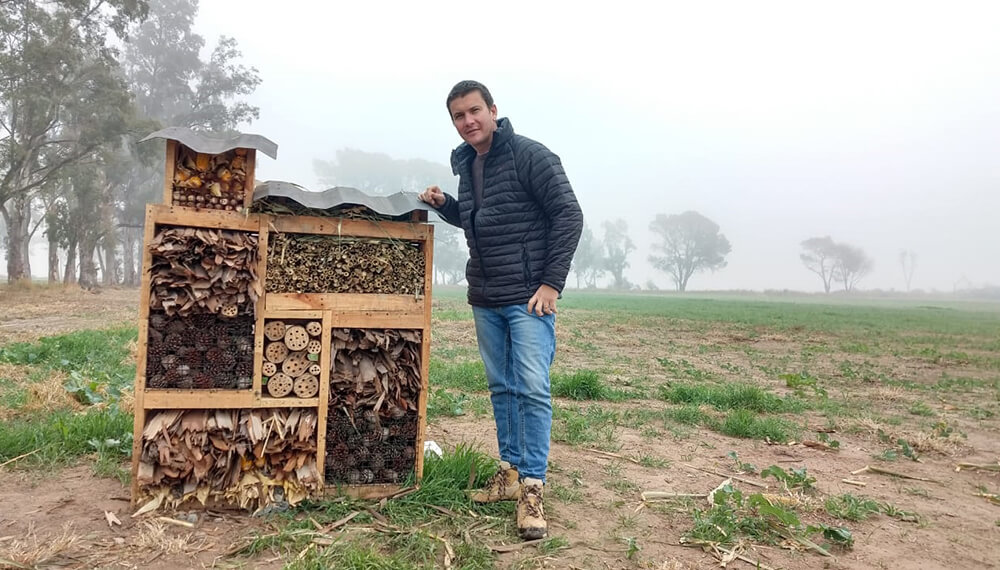 Lucas Andreoni - Hotel de Insectos