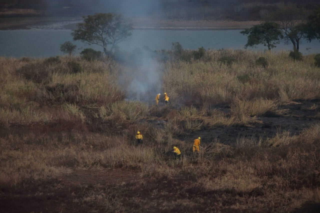 delta parana quema pastizales