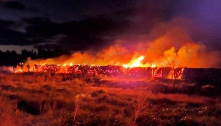 incendio campos maiz