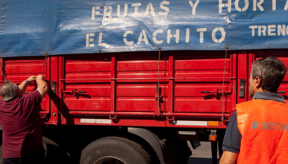 Camion - Senasa - Autogestión - DT-e
