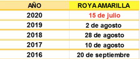 Trigo - Aparición de roya amarilla - INTA Parana - 2007