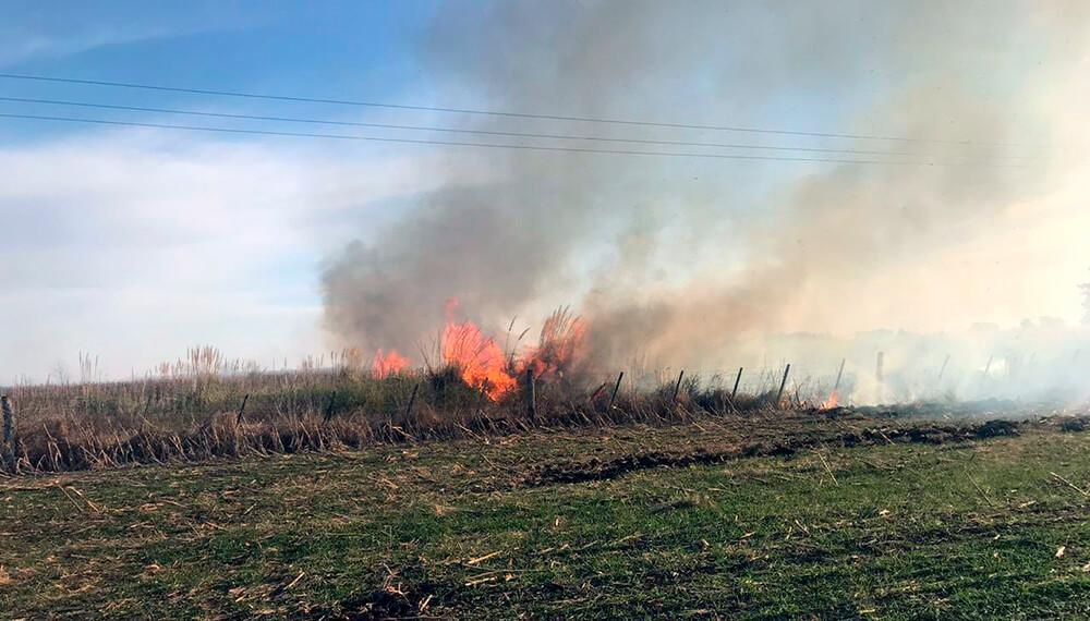incendio campos trigo