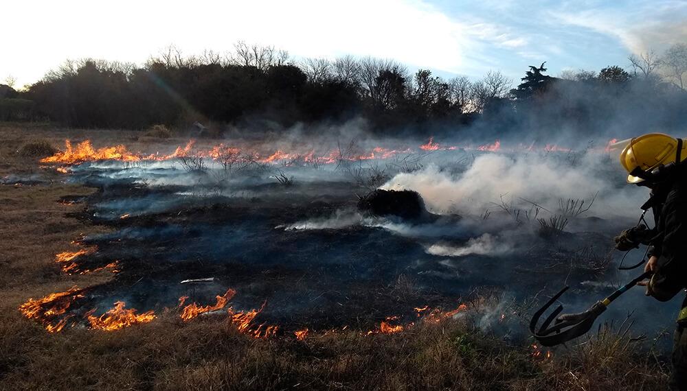incendio matheu pastizales
