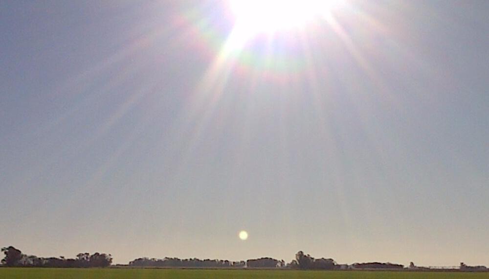 Dia calido - Sol - Trigo - Clima
