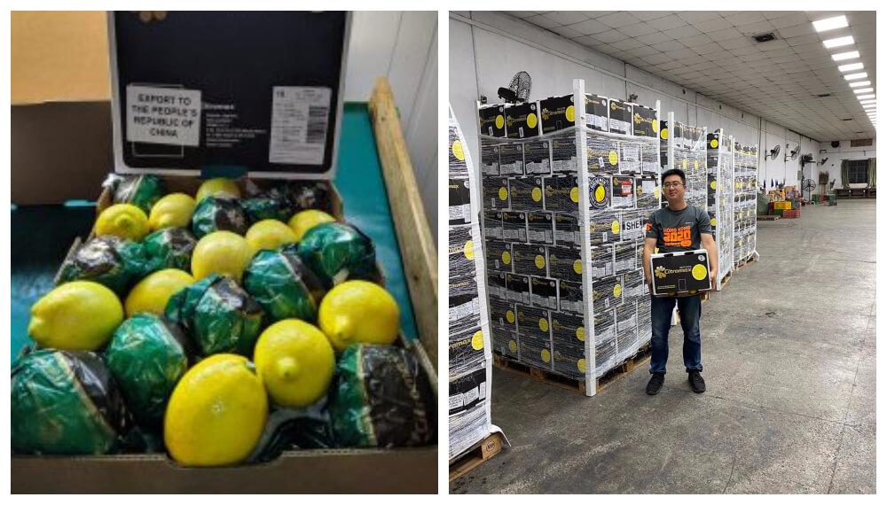 Llegada del limon argentino a Hong Kong - Citromax -