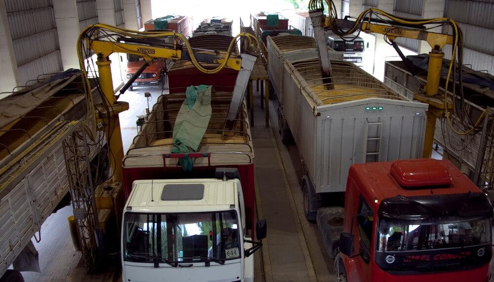 Descarga de camiones - Granos