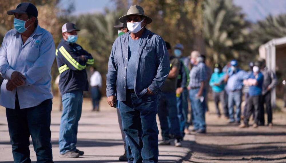 Vacunacion de trabajadores agrícolas en California - USA