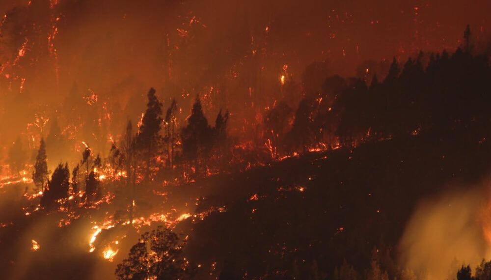 Incendios en Chubut - marzo 2021