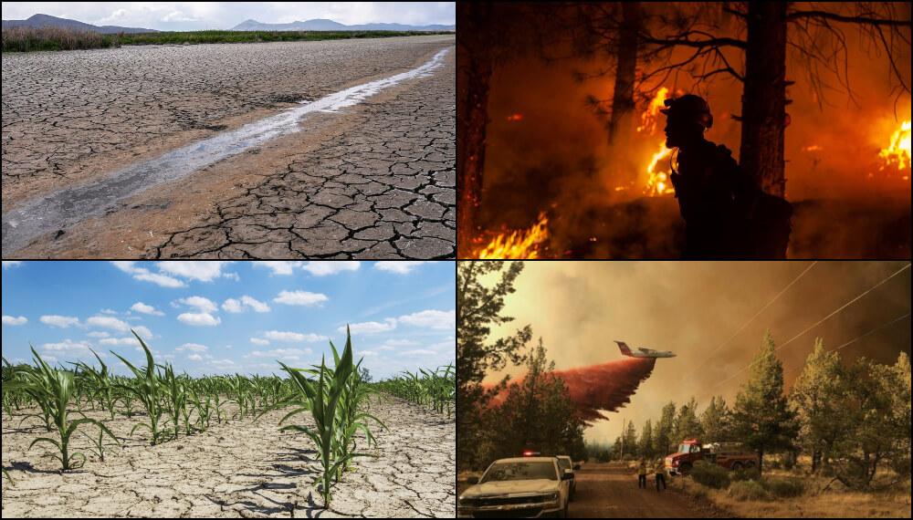 Fotos del clima extremo en el Hemisferio Norte - Julio 2021