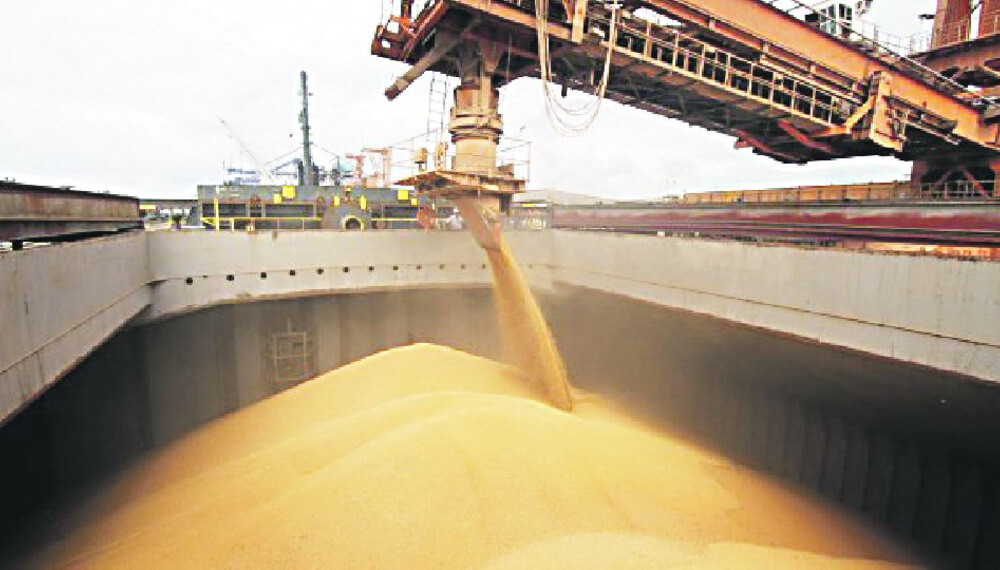 Empresas exportación de granos