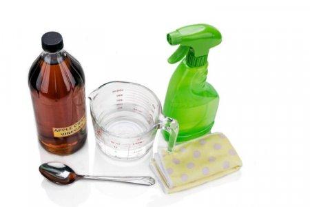 spray casero antimoscas