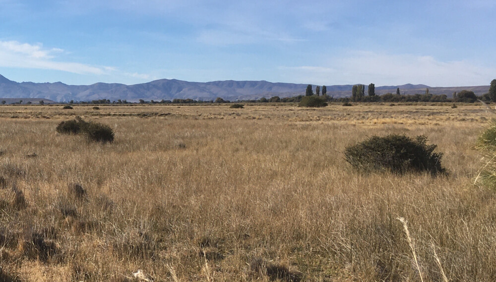 Ambiente Patagonia - Desertificacion