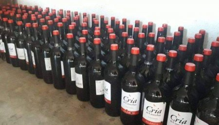 Saqueo de camion de vinos