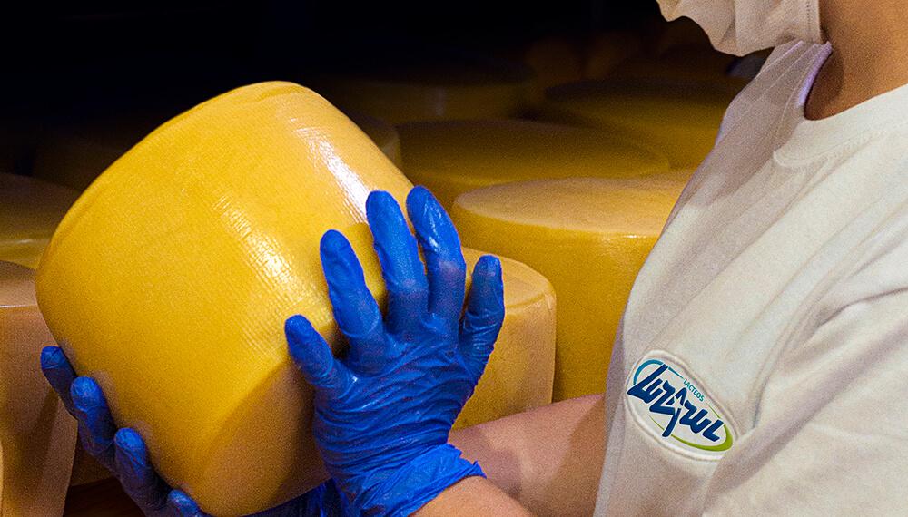 pyme lactea queso