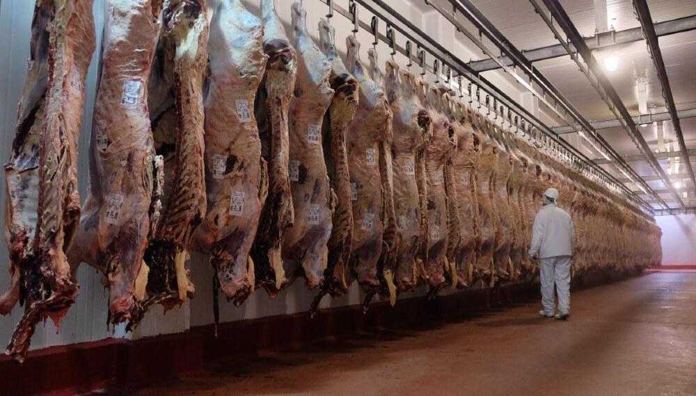 Exportacion de carne