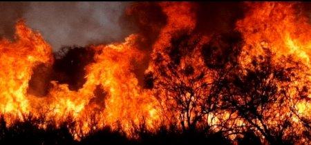 Incendios en San Luis