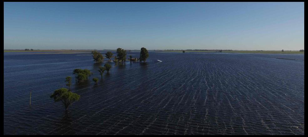 i26501-general-villegas-inundaciones-campo-960