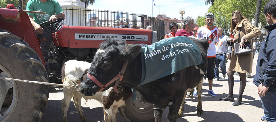 """Buenos Aires: Pequeños productores vendieron en Plaza de Mayo, más de 20.000 kilos de verdura y otros productos del campo al precio que les pagan en las chacras, en el marco del """"feriazo de la economías regionales"""", una jornada de ferias y movilizaciones en plazas de otras ciudades del país, en la que reclamarán políticas para el sector. Foto: Laura Cano/Télam/AA 03/10/2017"""